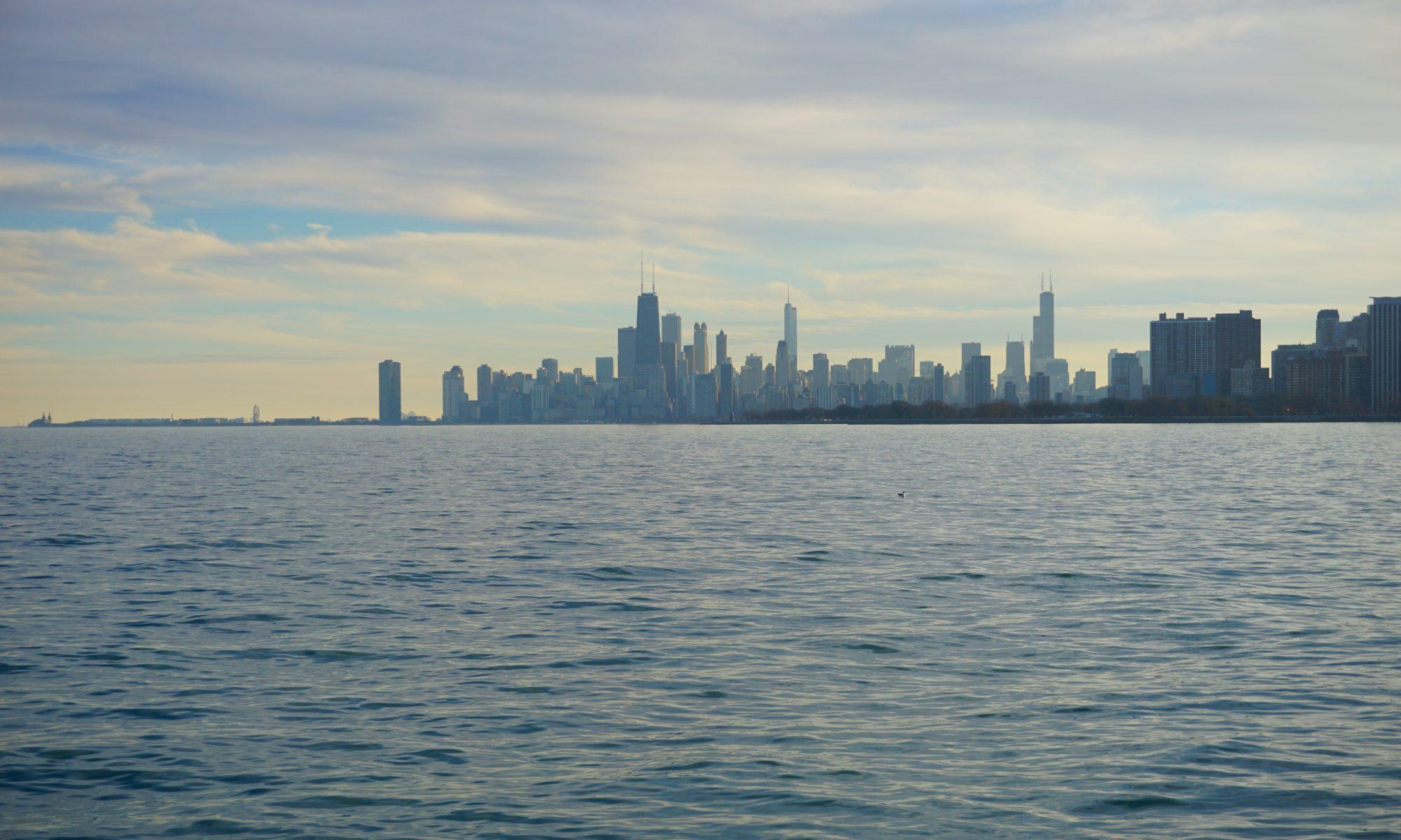 The Chicago Flâneur
